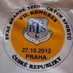 Kongres SBTS 2012